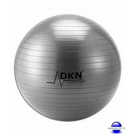 Gym Ball diamètre 65 cm