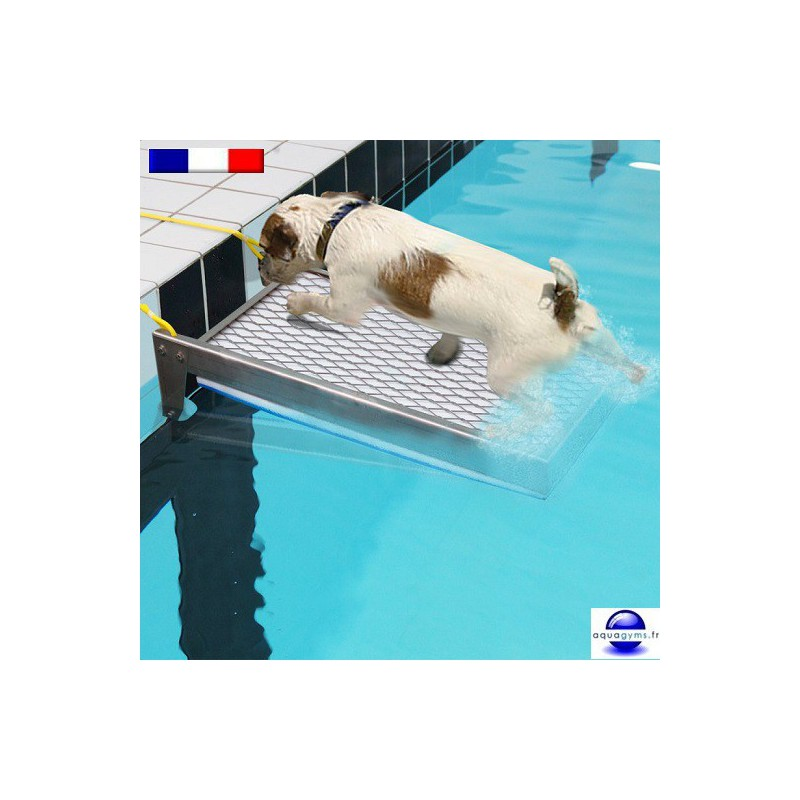 Rampe animaux antinoyade de piscine for Animaux gonflable piscine